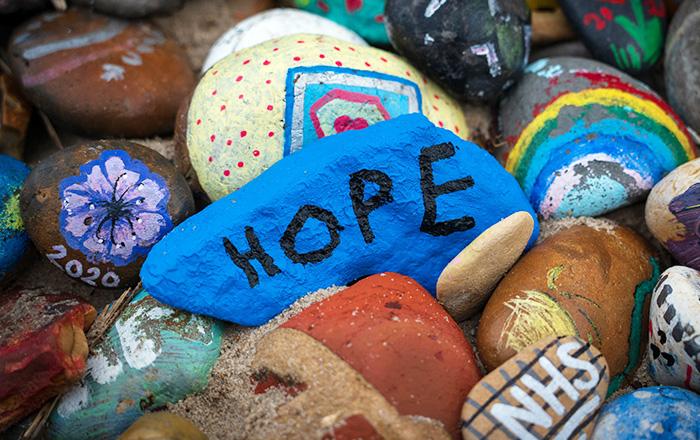 再生医療の希望