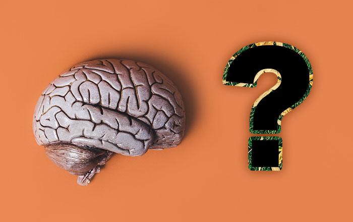 脳幹梗塞とは